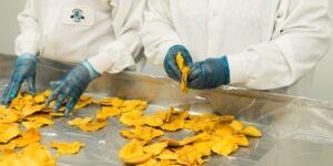 ayudas-inversiones-transformacion-alimentos